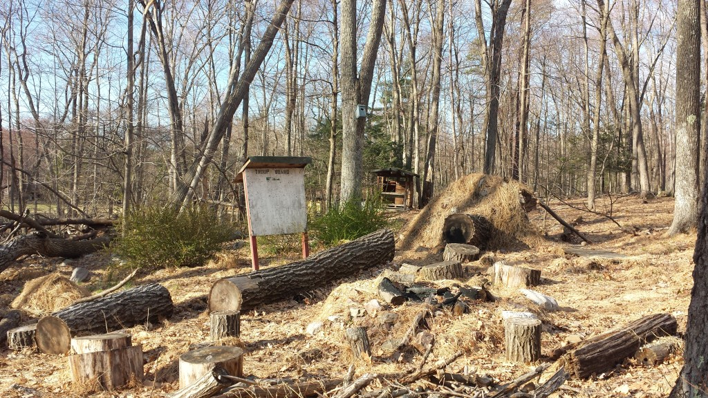 cabins-view20150425_175323